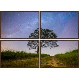 Quadro Céu Estrelado - Interior de São Paulo - Políptico