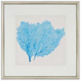Quadro 3652 - Coral Azul