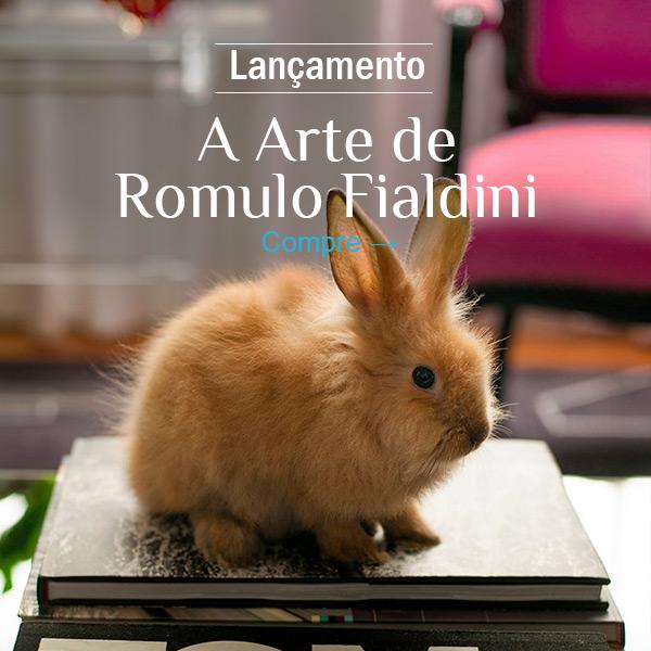 A Arte de Rômulo Fialdini - Compre!