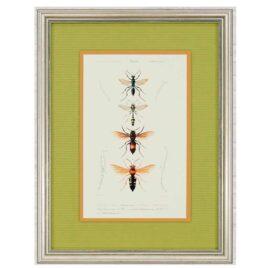 Quadro Bees