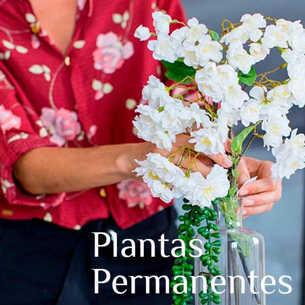 Plantas Virtual