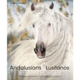 Andalusians & Lusitanos – Iberian Horses