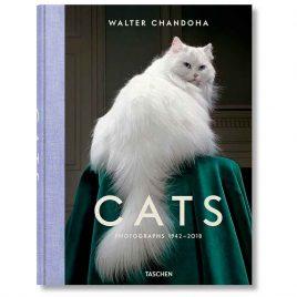 Cats – Walter Chandoha